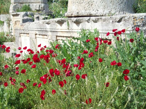Poppies decorating the Doric frieze that may be a tromp l'oeils underground temple to Demeter, Hele, or Persephone.