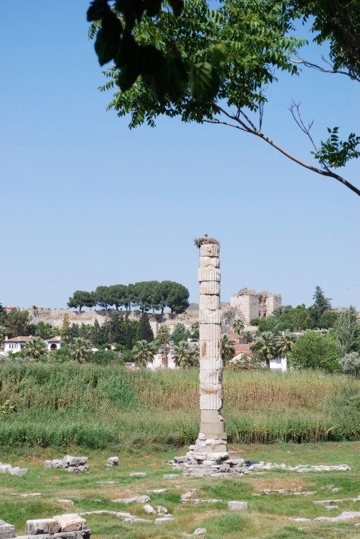 The single standing column of the temple of Artemis at Ephesus, now the nest of a family of storks.