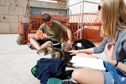 Joe and KT attacked by the opita cats during a mid-morning snack break.
